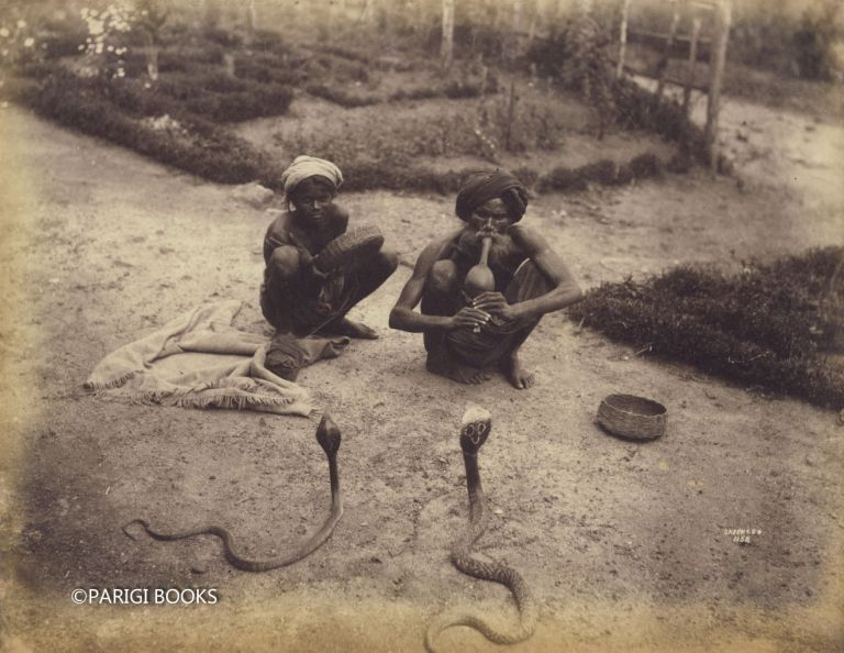 Albumen Print of Snake Charmers in Ceylon (Sri Lanka). William Louis Henry Skeen.