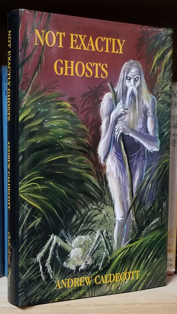 Not Exactly Ghosts: Collected Weird Tales. Andrew Caldecott.